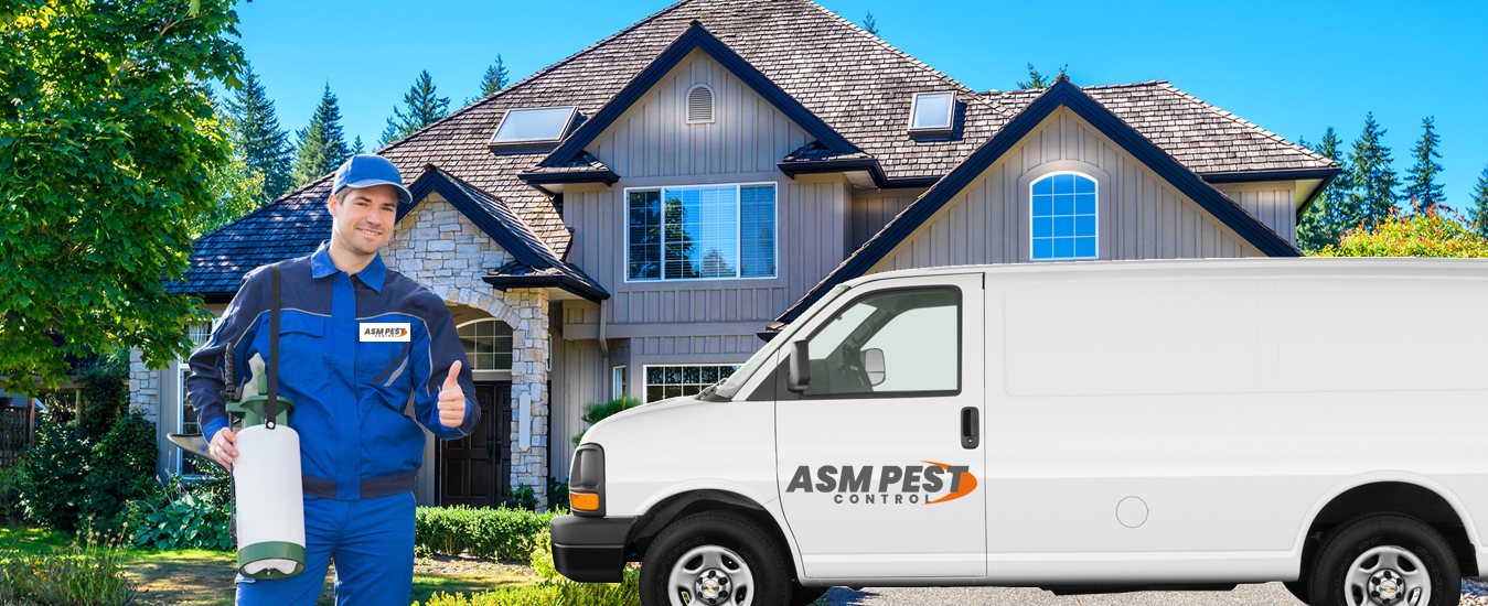 ASM Pest Control Services